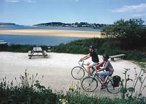 Self catering breaks at Ruthern Lodge 5 at Ruthern Valley Holidays in Ruthernbridge, Cornwall